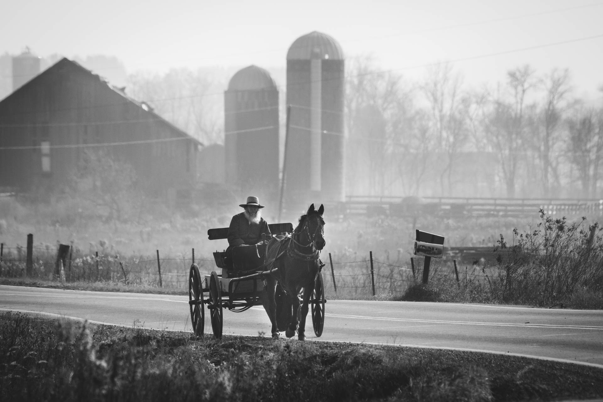 amish-man-grey-beard-horse-and-wagon-down-country-road-barn-6945