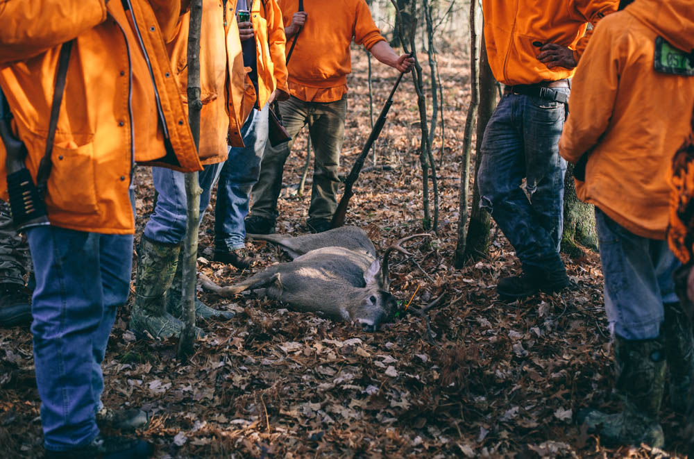 big-buck-shot-during-deer-drive-surrounded-by-hunters-2430