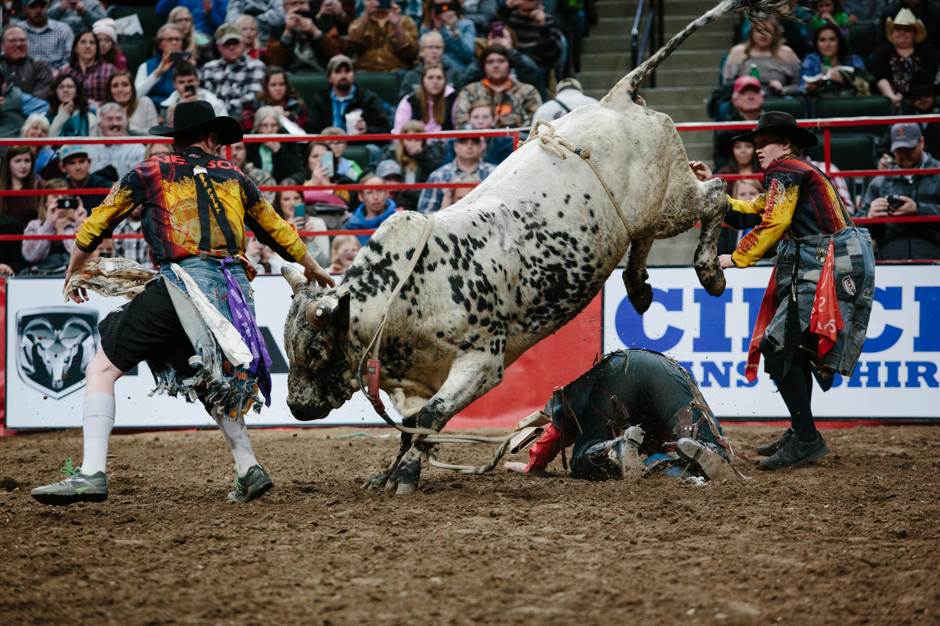 clinch-worlds-toughest-rodeo-9296