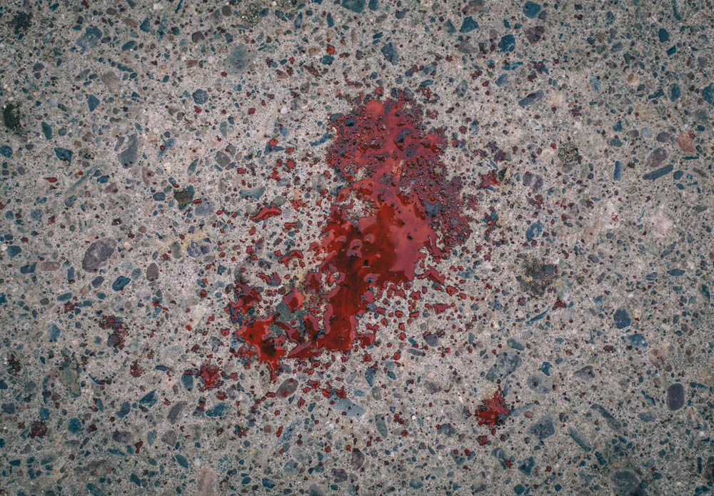 deer-blood-on-the-ground-3256