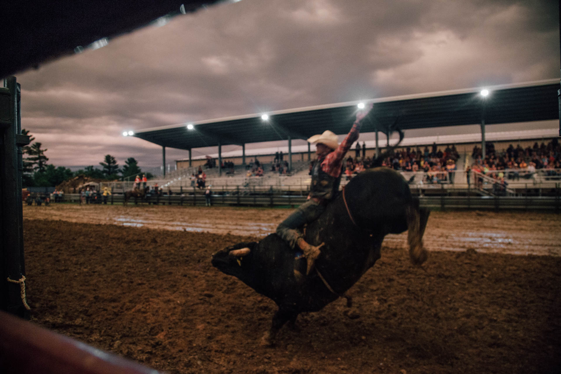 eight-second-bull-ride-arm-up-muddy-arena-a5086