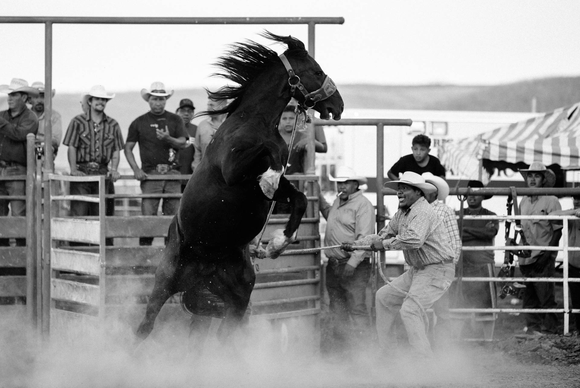 indian-rodeo-wild-horse-race-action-dust.JPG